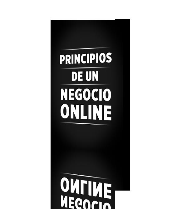 Principios de un Negocio Online exitoso